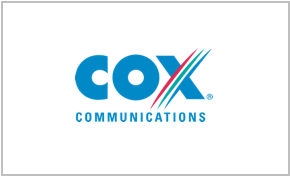 COX Synthesis Systems