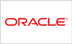 Oracle Synthesis Systems